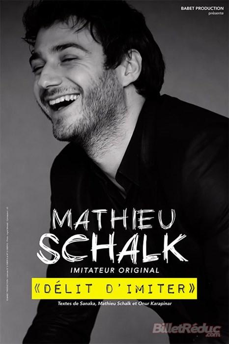 mathieu schalk, guignols, imitateur, délit d'imiter, sanaka, one man show , festival d'avignon
