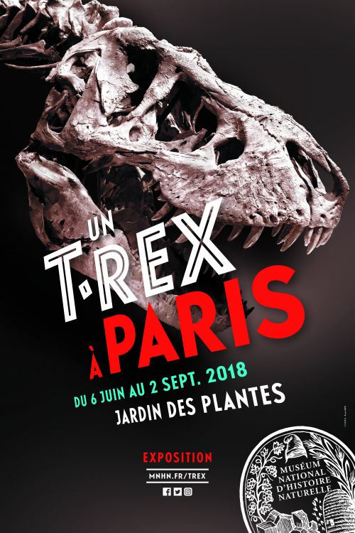 Un T-Tex à Paris