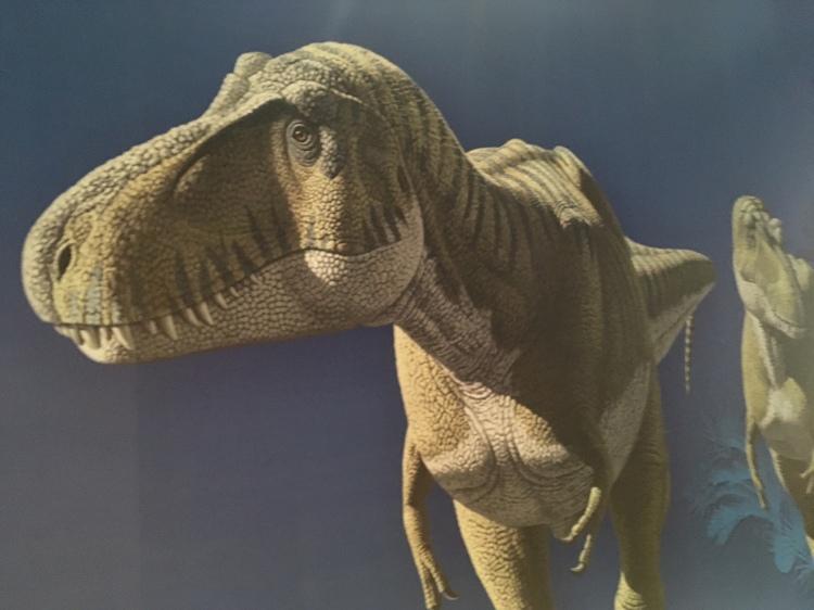 Un T-Rex à Paris